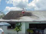 tampa roof cleaning picture.jpg